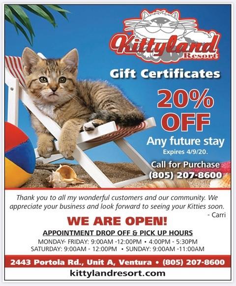 Ventura California Cat Boarding